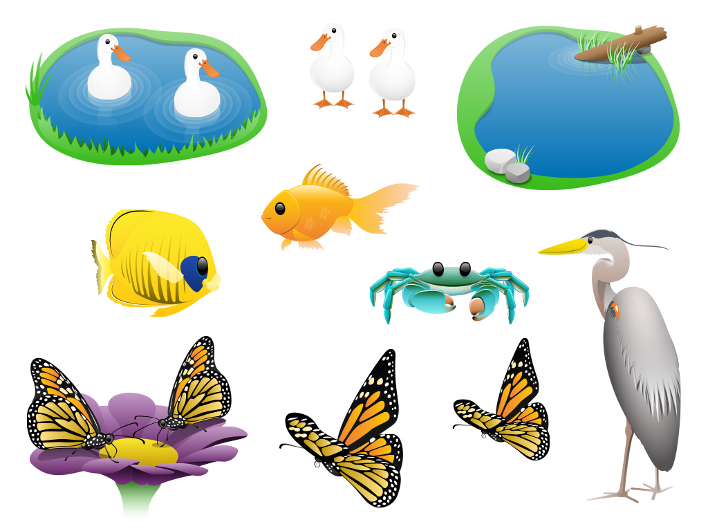 Go Math Production Graphics Animals